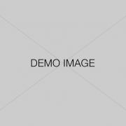 demo-image 2