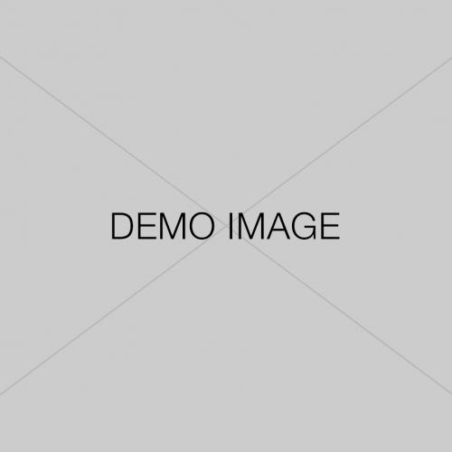 demo-image 5